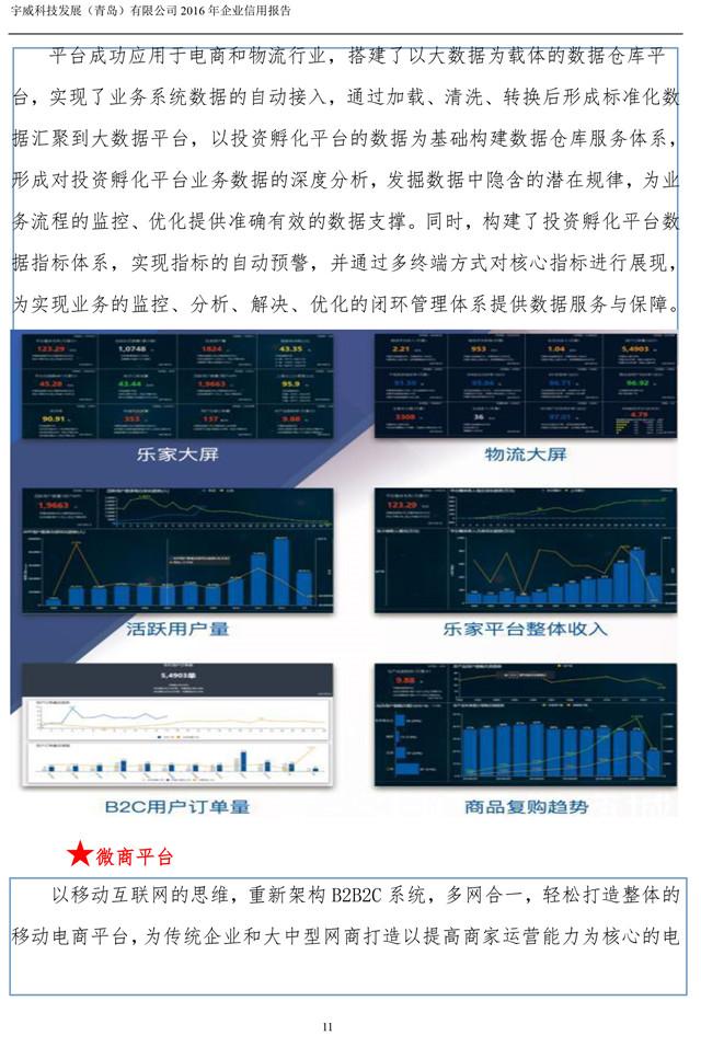 宇威科技企业信用报告-11.jpg