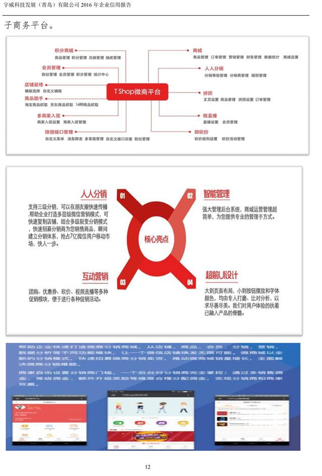 宇威科技企业信用报告-12.jpg